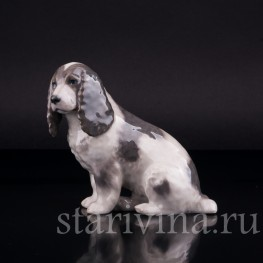 Фарфоровая статуэтка собаки Спаниель, Royal Copenhagen, Дания, сер. 20 в.